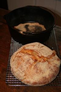 kneadbread